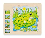 Wooden 5 Layers Life Cycle of a Frog Montessori Puzzle for Kids 3+