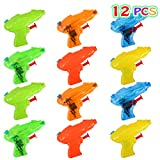 Lumiparty Mini Squirt Water Guns Water Blaster Soaker,Water Squirt Water Fight Toys,Summer Swimming Pool Beach Toy,Plastic Blasters for Kids Party Favors (12PACK).