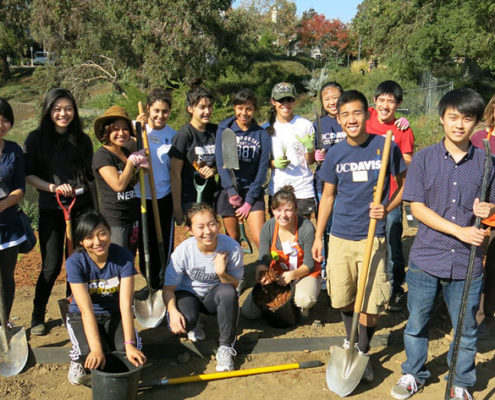 Community Service and Youth Examples