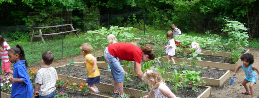 Community Service Ideas for Kids all Ages
