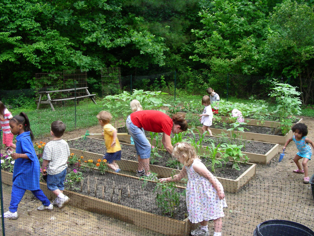 75 Community Service Ideas For Kids Of All Ages Kid