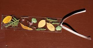 A picture of various nature items taped on to the bookmark. There's various leaves taped to the bookmark.