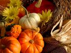 thanksgiving school celebration event