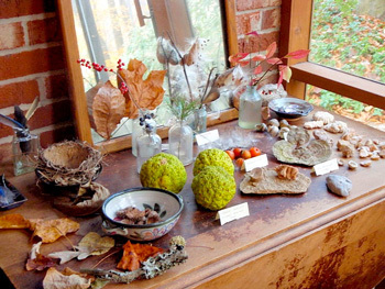 Leaf themed display table for kids. On this display table is different rocks, geodes, and leaves.