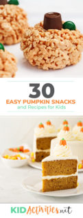 A collection of pumpkin snacks and treats. These are great for school events or holiday parties at home. Enjoy no-bake pumpkin pie recipes, pumpkin dips, pumpkin soups, and even some delicious pumpkin seed recipes.