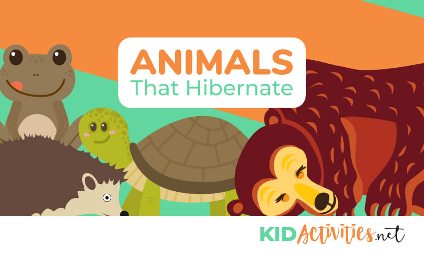 A list of animals that hibernate during the winter.