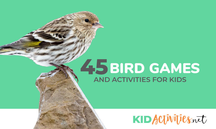 A small bird standing on a rock with text that reads 45 bird games and activities for kids.