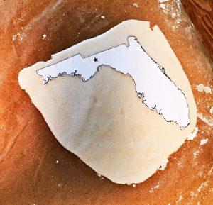 3D Salt Dough Map of Florida