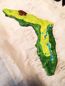 3D Salt Dough Map of Florida 3