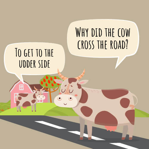 Why did the cow cross the road joke