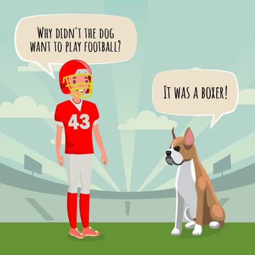 "A picture of a football player and a dog with the joke ""Why didn't the dog want to play football?"""