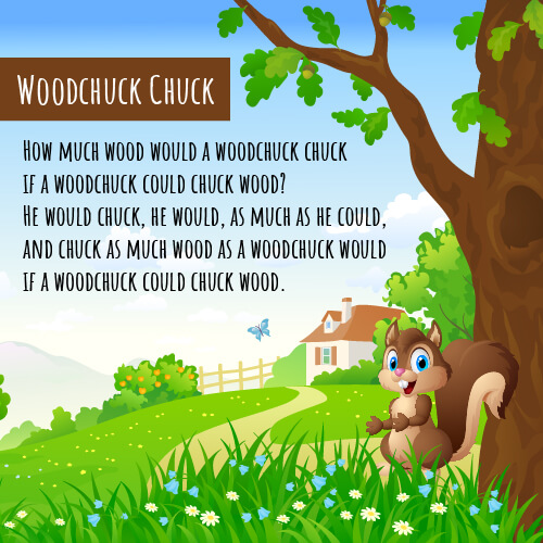 A picture of a squirrel with the tongue twister how much could a woodchuck chuck written on it.